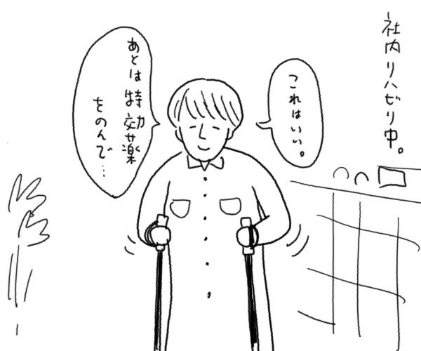 Ari017